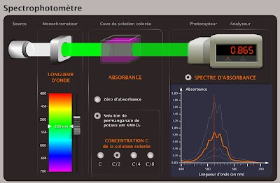 http://ghostyd.free.fr/ressources1ereS/C5%20Changement%20de%20couleur%20et%20r%C3%A9action%20chimique/5-simulation_Spectrophotometre_chap05.swf