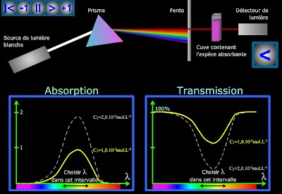 http://physiquepovo.com/FANIMATIONS/spectro.swf
